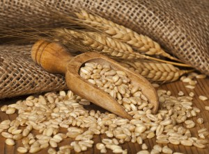 Rural scene with grains and ears of wheat on wooden background.